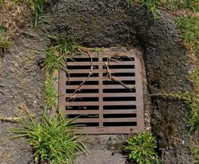 Аналіз зливових стічних вод та води із поверхневих водоймів